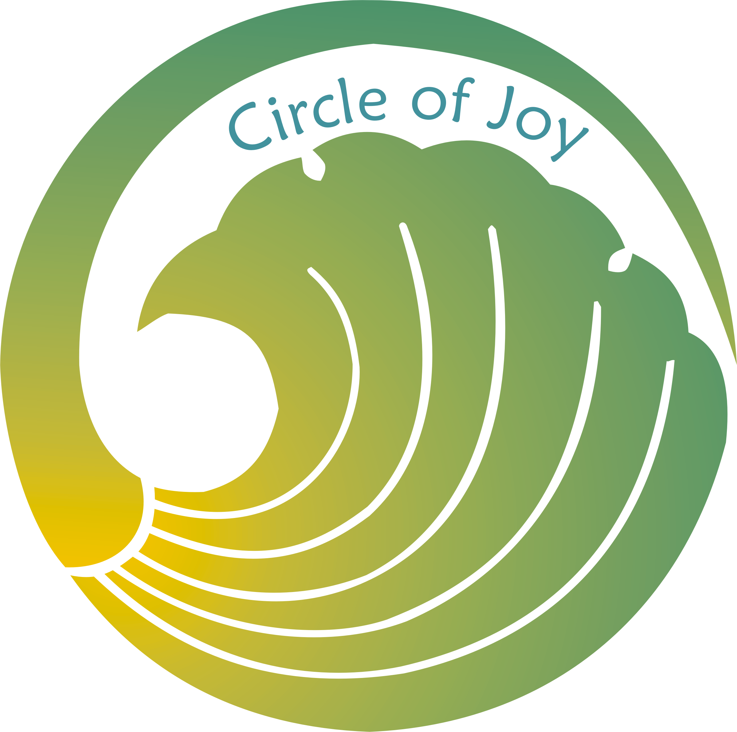 Circle of joy graphic